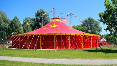 Photo of The UK also has clowns: the circus attraction