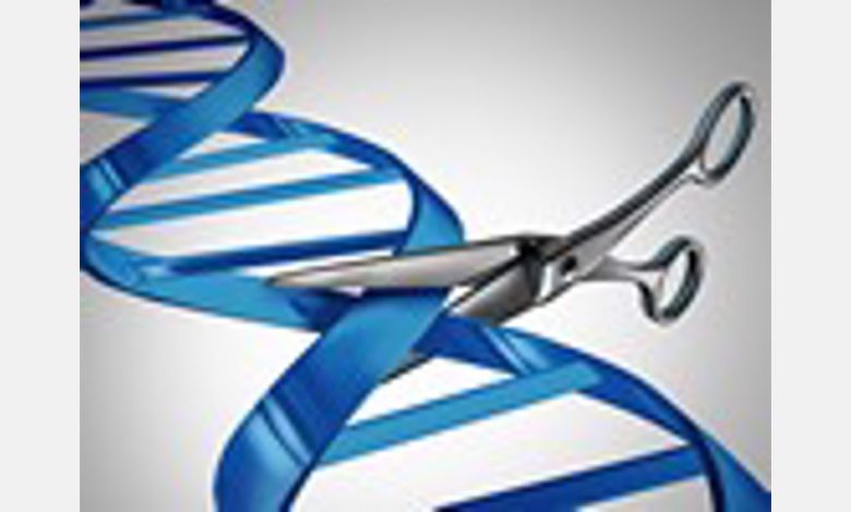 UK ministers are taking the first important step towards using genome editing technologies in agriculture